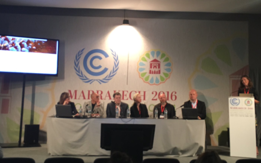 UN's meeting COP22, Marrakech