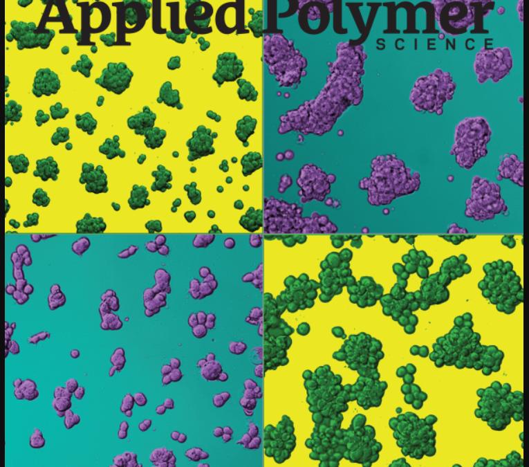 """Användning av nanoleran """"Perkalite"""" som katalysator visar på en mer effektiv och renare återvinningsprocess av PET"""